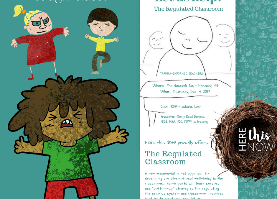 """I NEED to Self-Regulate:  Rolling Out, """"The Regulated Classroom"""""""