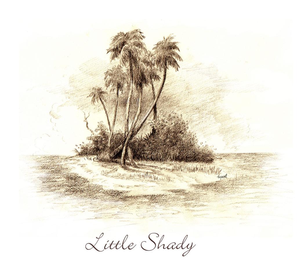 little shady
