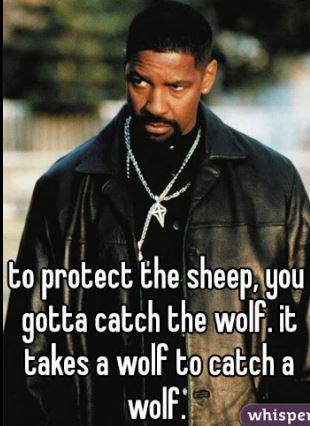 AgentFreakNasty_IT_takes_a_wolf_to_catch_wolf