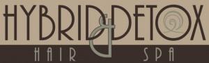 hybrid logo shrunk