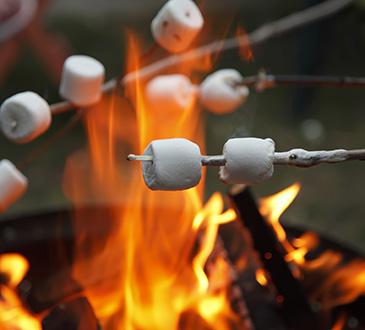 roasting-marshmellows