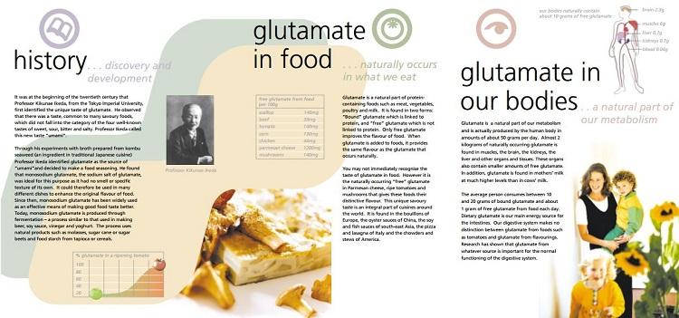 Glutamate Facts Leaflet
