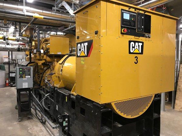 Brock University Cat Generator