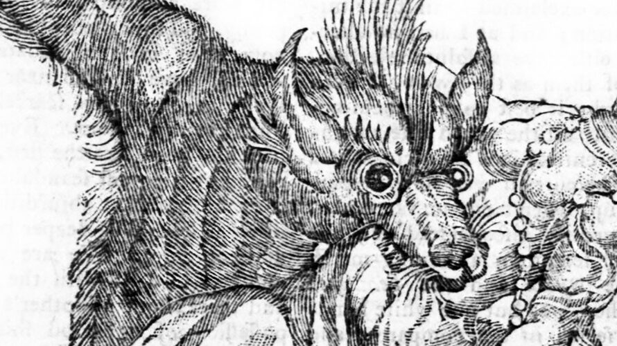Menagerie Monstrum: Lesser-Known Lycanthrope