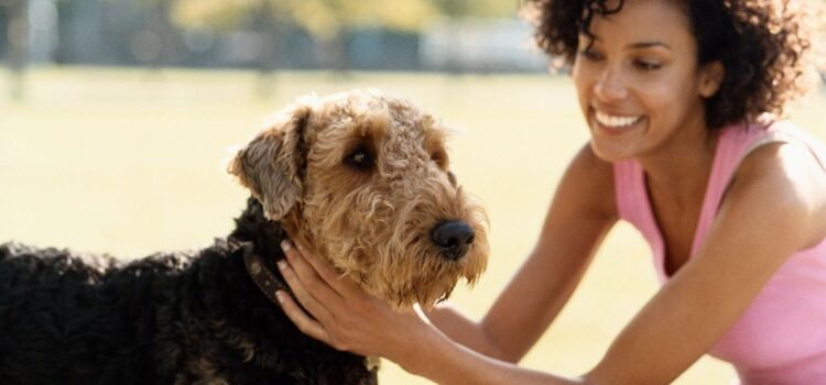 Healthy Pet Supply Franchise For Sale