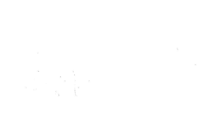 Louisiana Run