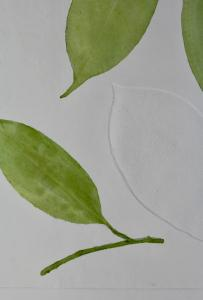 A Leaf in the Wind #2, Indian Medlar & Cestrum Nocturnum (detail)