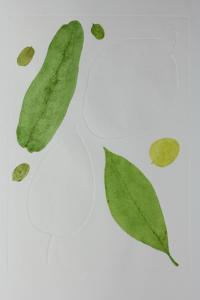 A Leaf in the Wind #4, Java Cassia, Frangipani of the Temple, Cestrum Nocturnum & Kadamba