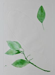 A Leaf in the Wind #6, Beleric Myrobalan, Sapodilla Plum & Cinnamon