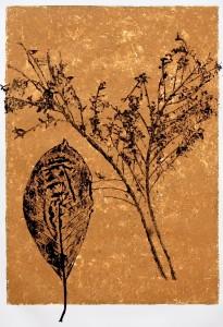 A Leaf in the Wind #12, Cestrum Nocturnum & Jacaranda