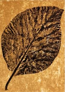 A Leaf in the Wind #11, Teak