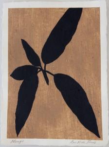 Sanskriti Leaves, Mango