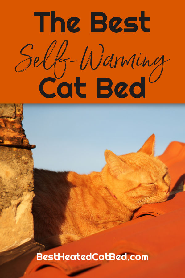 Best Self Warming Cat Bed by BestHeatedCatBed.com