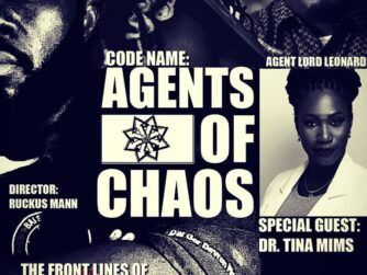 agents of chaos