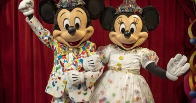 The 4-Park Magic Ticket at Walt Disney World