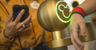 Disney FastPass+ Basics