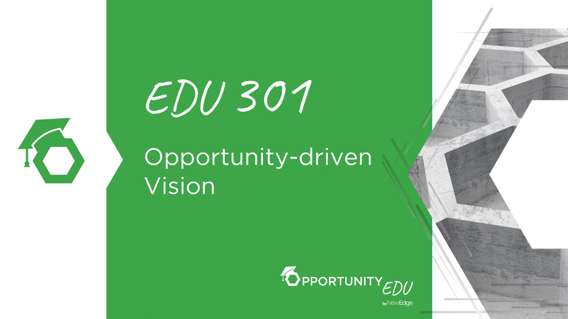 EDU 301 Opportunity-driven Vision