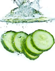 Fab Foods Cucumber
