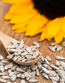 Fab Foods Sunflower