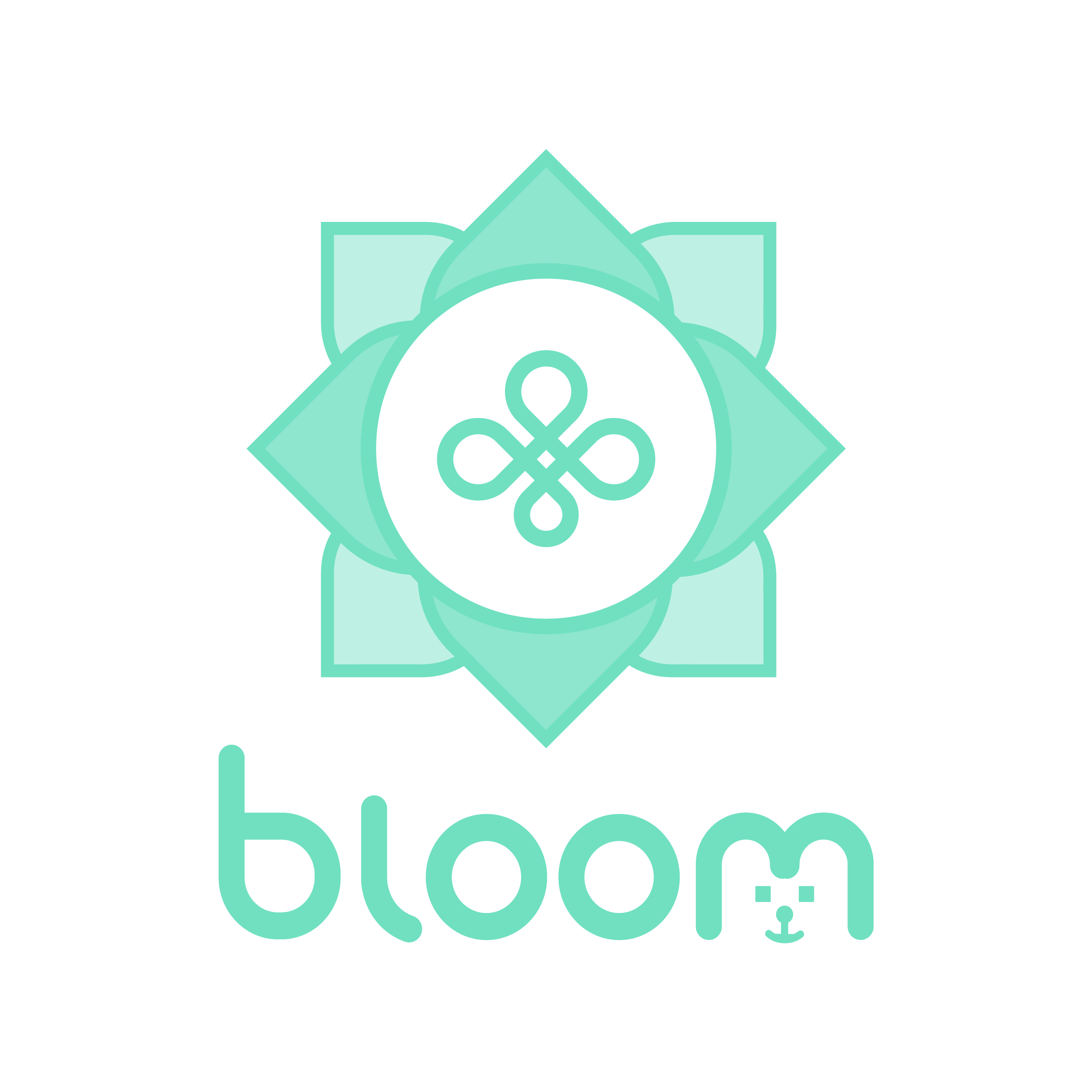Bloom Natural | Natural Hemp Products for Pets