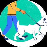 pet health 3