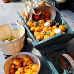 Farmers' Market Minestrone