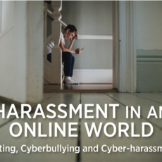 Harassment in an Online World by Felicia Farber