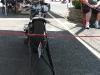 bike-show-11