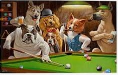 dogs playing pool - dogspeaking.com