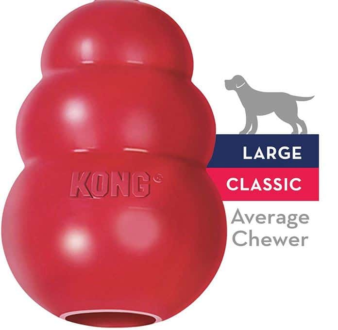 Kong Treat ball - dogspeaking.com