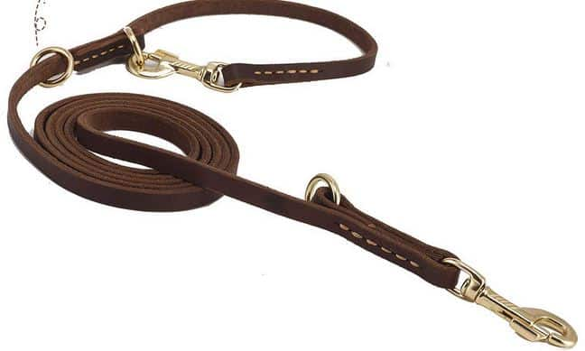 Leather adjustable leash Dogspeaking.com