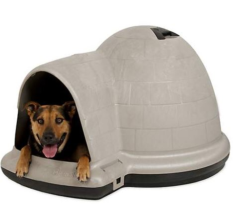 The indigo dog house Best dog house - dogspeaking.com