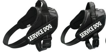 Tough service dog harness