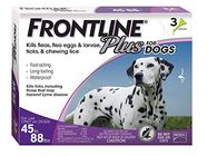 when to take a dog to the vet. Frontline packet . Dogspeaking.com