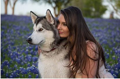 Dog obedience Training Tools – How to train a dog, husky and lady - dogspeaking.com