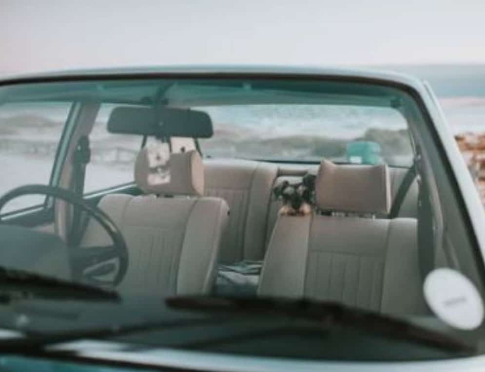 dogs driving and dog car travel - never leave a dog in a car unattended dogspeaking.com