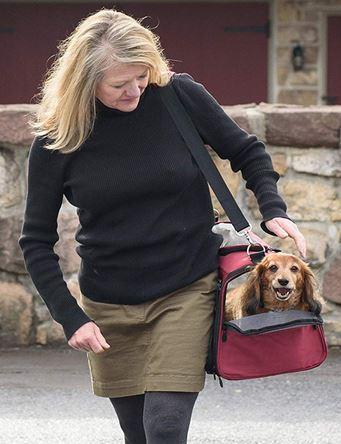Gen7 Pet carrier - dog crates- Travel carriers