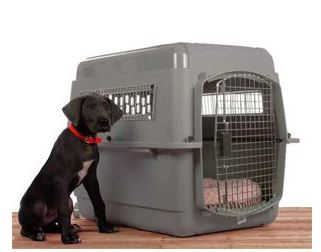 dog crates - travel crates for dogs. Petmate travel kennel