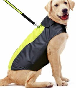 EZER waterproof dog coat with soft fleece lining