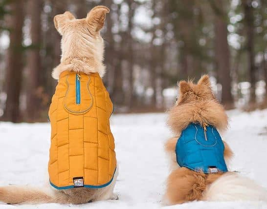 Kurgo dog jacket winter coat for dogs