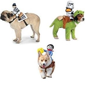 dog fancy dress - costume riders