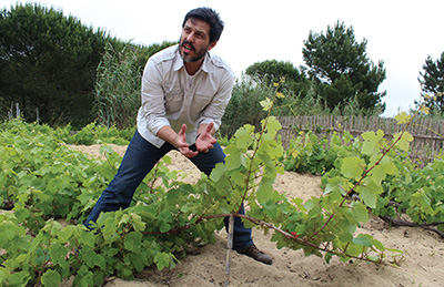 City Palate, guide to the good life in Calgary - feature - portugal - 2019-05-06 - Casca Wines co-owner, Helder Cunha