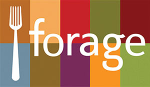 City Palate, guide to the good life in Calgary - word of mouth - 2019-05-06 - forage logo