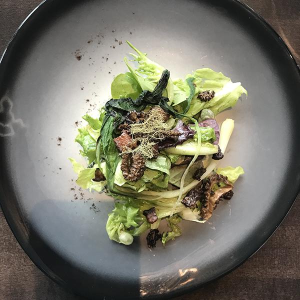 the sensory salad