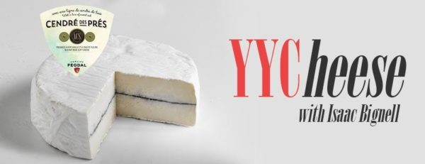yycheese column header picture of cendre de pres cheese