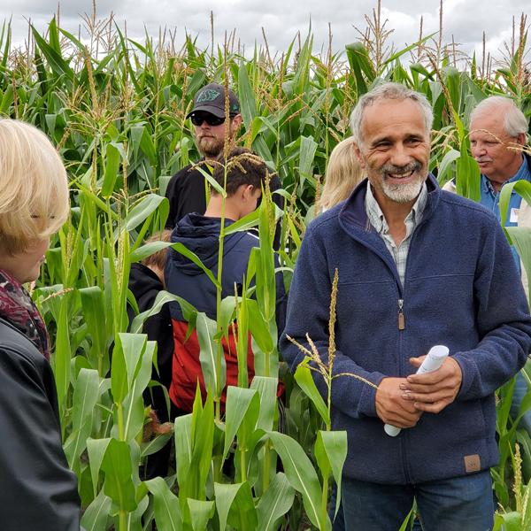 stettler farm tour people in a corn field