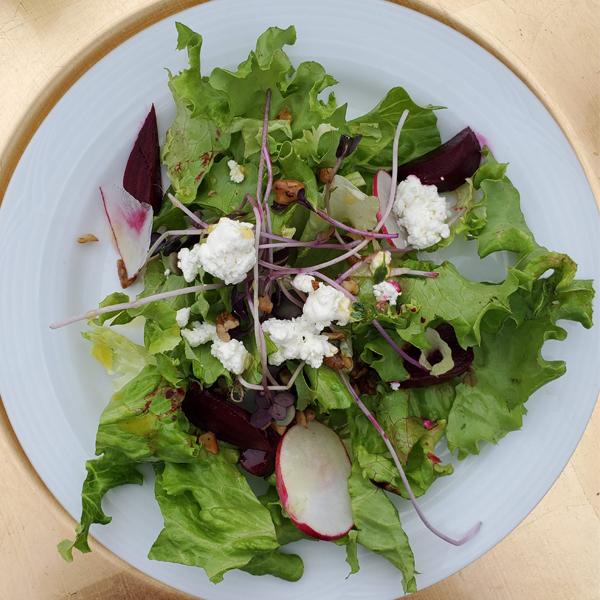 beet salad stettler taste of the heartland long-table dinner
