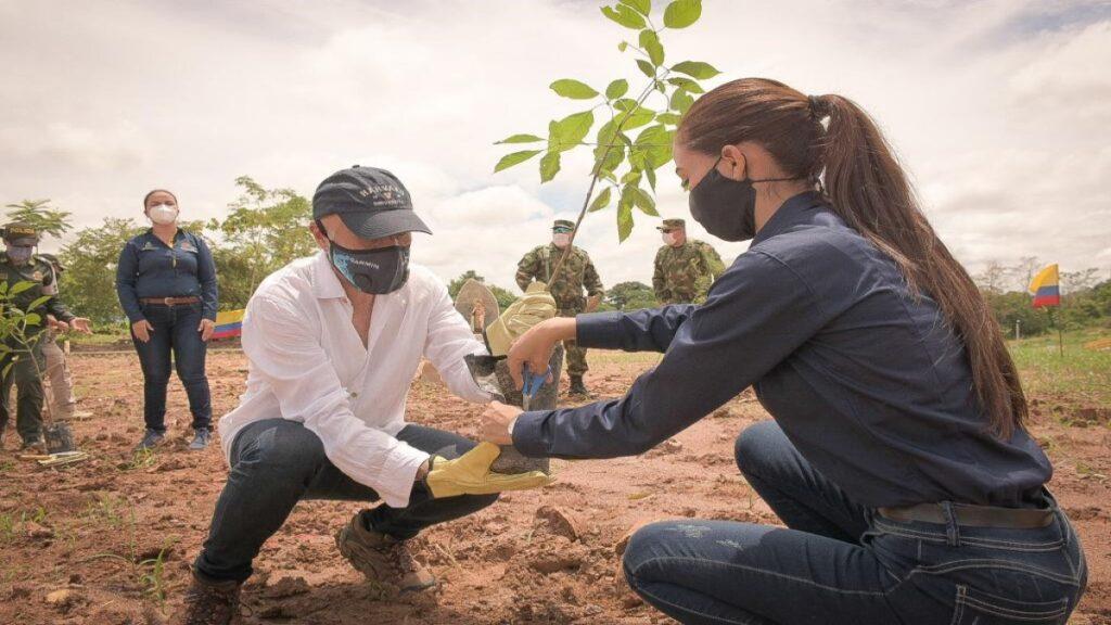 Reforestar en el Centenario – Por: Darío Echeverry Jr