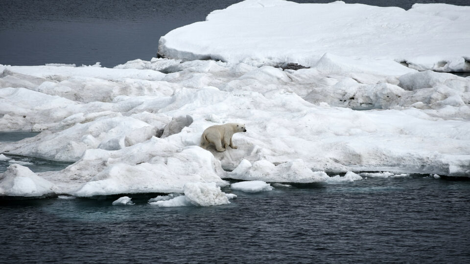 Melting Ice Cooling Earth Warmer Arctic Climate Change
