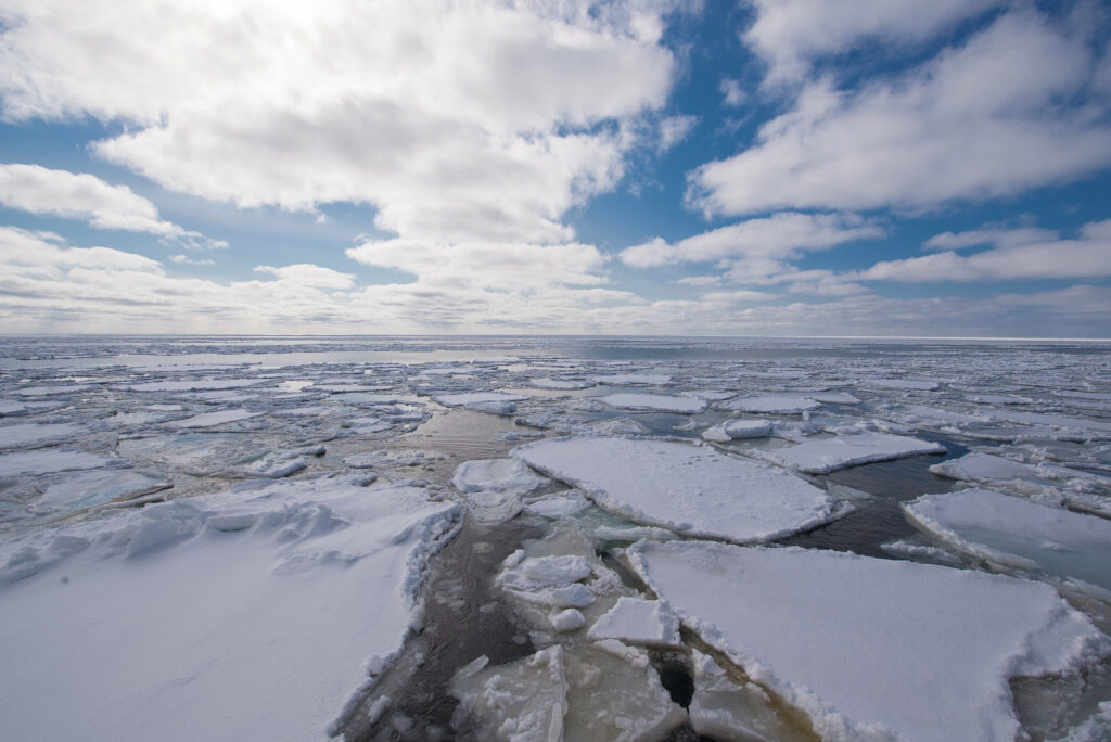 ice melts global warming